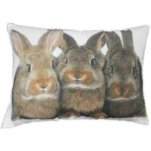 Toile coussin 3 lapins bruns 35x50cm