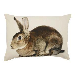 Toile coussin lièvre 35x50cm