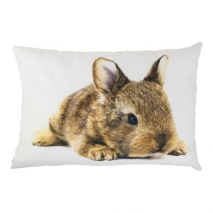 Toile coussin lapin sauvage 35x50cm